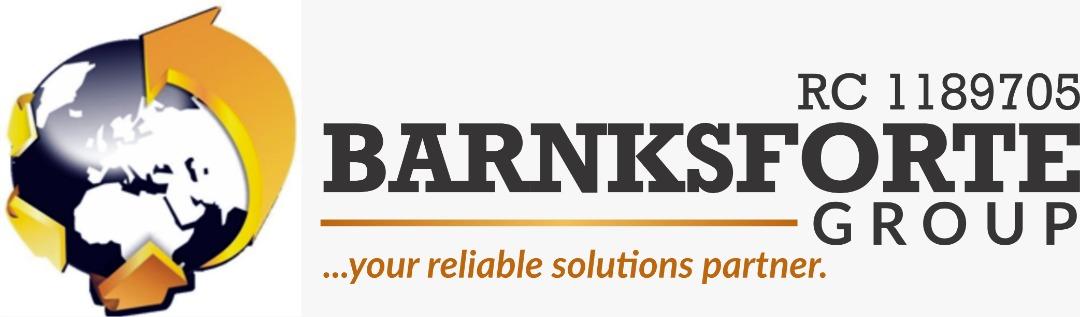 barnksforte_group_logo